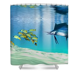 The Reef Shower Curtain by Corey Ford