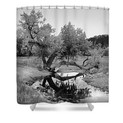 Eye Of The Stream Shower Curtain