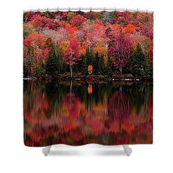 The Reflection Shower Curtain
