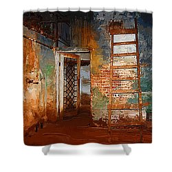 Shower Curtain featuring the painting The Renovation by Holly Ethan