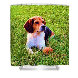 The Reserved Beagle Shower Curtain