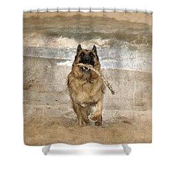 The Retrieve Shower Curtain by Angie Tirado