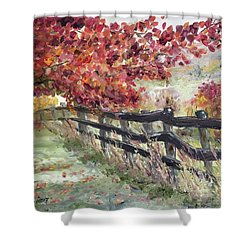 The Rickety Fence Shower Curtain by Roxy Rich