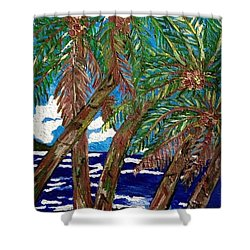 The Ride To Opihikao Shower Curtain