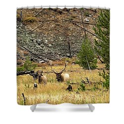 The Right Breeze Shower Curtain