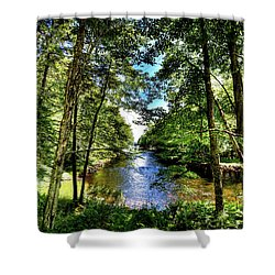 Shower Curtain featuring the photograph The River At Covewood by David Patterson