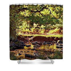 The River Lin , Bradgate Park Shower Curtain by John Edwards