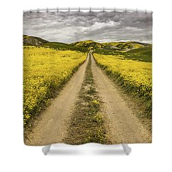 Shower Curtain featuring the photograph The Road Less Pollenated by Peter Tellone