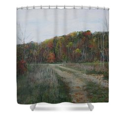 The Road To Autumn Shower Curtain
