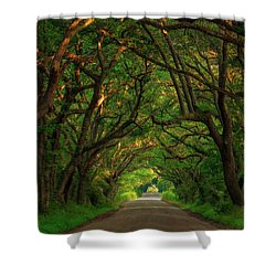 The Road To Heven  Shower Curtain