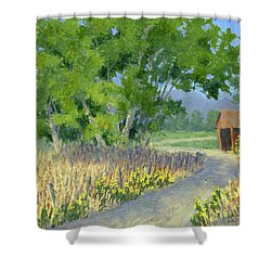 The Road To The Back Field Shower Curtain