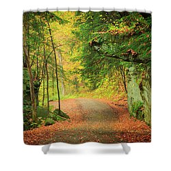 The Road To The Mill  Shower Curtain