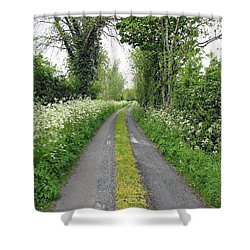 The Road To The Wood Shower Curtain by Ethna Gillespie