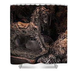 The Rocking Horse Winner Shower Curtain by William Fields