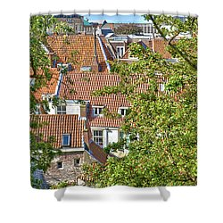 The Rooftops Of Leiden Shower Curtain