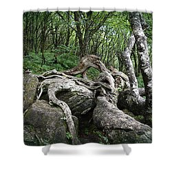 The Root Shower Curtain