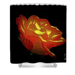 The Rose 3 Shower Curtain