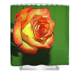 The Rose 4 Shower Curtain