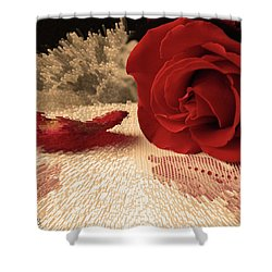 Shower Curtain featuring the photograph The Rose by Bonnie Willis