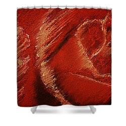 The Rose Shower Curtain by David Patterson