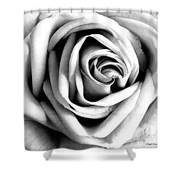 The Rose Shower Curtain by Michelle Wiarda