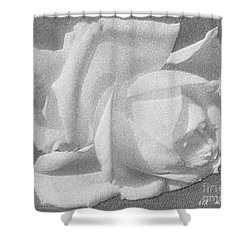Shower Curtain featuring the digital art The Rose by Saribelle Rodriguez