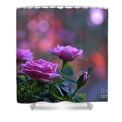 Shower Curtain featuring the photograph The Roses by Lance Sheridan-Peel