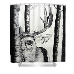 Shower Curtain featuring the drawing The Rutt by Mayhem Mediums
