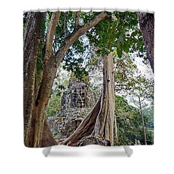 The S Gate Shower Curtain by Arik S Mintorogo