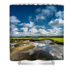 The Salt Marshes, Wellfleet Ma Shower Curtain by Dapixara Art