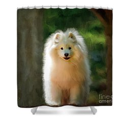 The Samoyed Smile Shower Curtain by Lois Bryan
