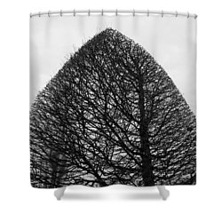 The Sculpted Life 1 Shower Curtain by Colleen Williams