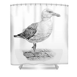 The Seagull Strut Shower Curtain