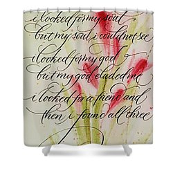 The Searcher By Thomas Blake Shower Curtain