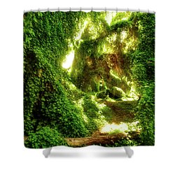 The Secret Garden, Perth Shower Curtain by Dave Catley
