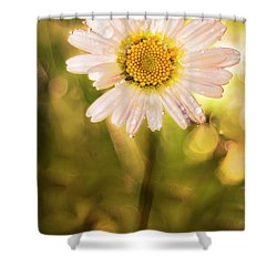 The Secret Language Of Flowers Shower Curtain