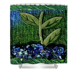 The Seedling Shower Curtain by Donna Blackhall