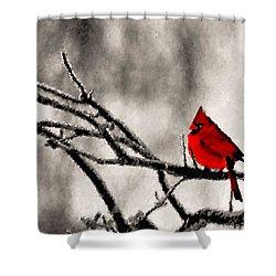 The Sentinel Shower Curtain by Kristin Elmquist