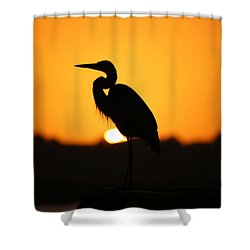 The Sentinel Shower Curtain by Lamarre Labadie