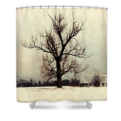 Shower Curtain featuring the photograph The Sentinel - Lone Winter Tree by Janine Riley