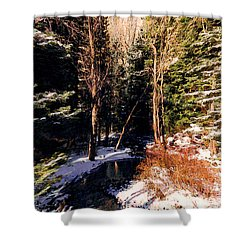 The Sentinels 1 Shower Curtain