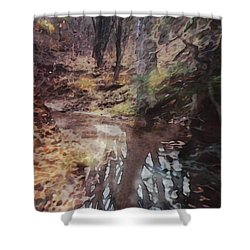 The Sentinels 2 Shower Curtain