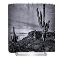 Shower Curtain featuring the photograph The Sentinels Of The Supes In Black And White  by Saija Lehtonen