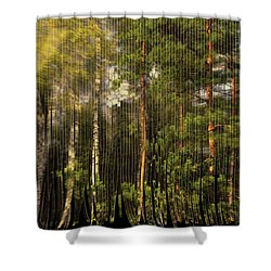 The Serpentine Forest Shower Curtain by Aleksander Rotner