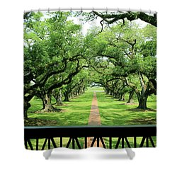 The Shade Of The Oak Tree Shower Curtain