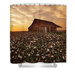 The Sharecropper Shack Shower Curtain