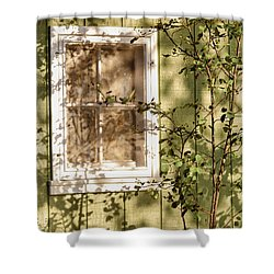 The Shed Window Shower Curtain