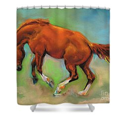 The Sheer Joy Of It Shower Curtain