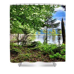 Shower Curtain featuring the photograph The Shore At Covewood by David Patterson