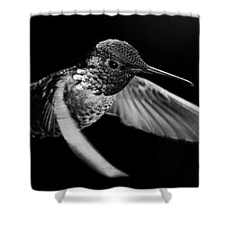 The Silver Inquisitor Shower Curtain